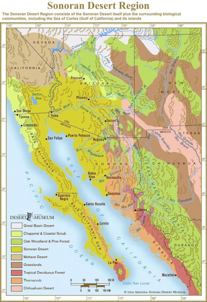 Sonoran Desert Region