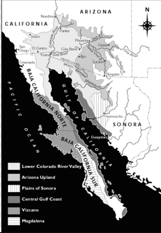 Subdivisions of the Sonoran Desert