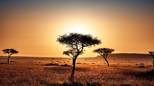 Kenya, photo by Dan Sudermann